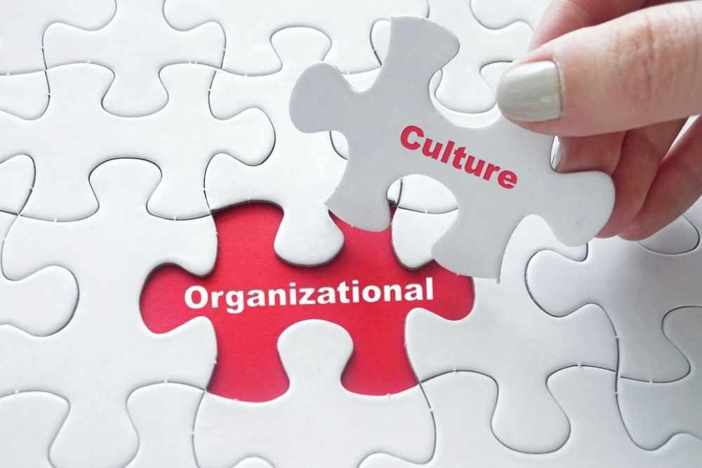 Organizational Culture Puzzle