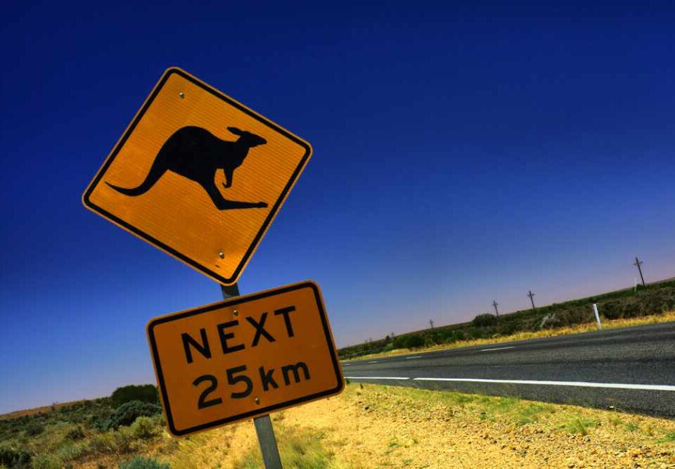 Straßenschild mit Känguru