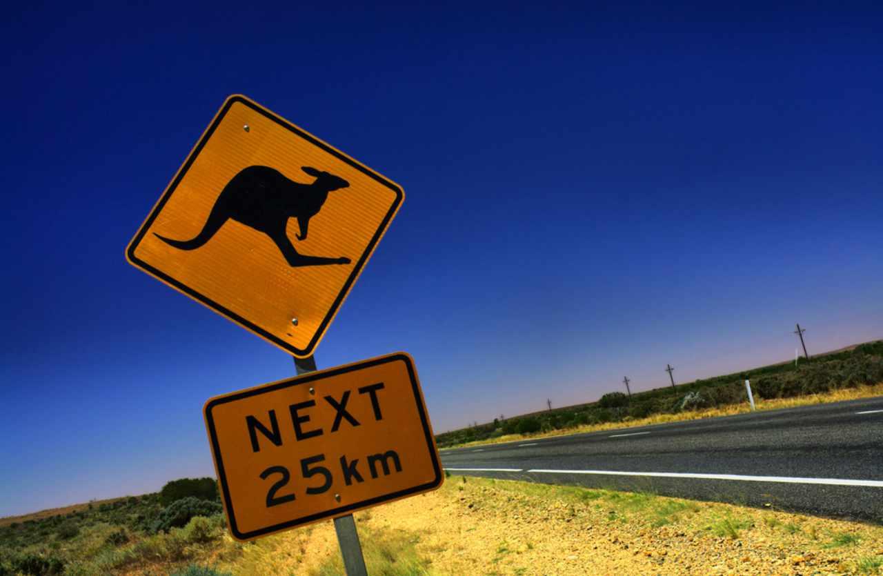 streetsign with kangaroo