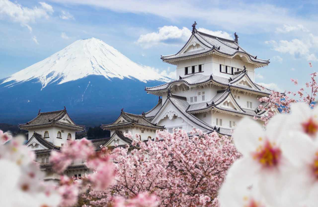 Kirschblütenbaum und Tempel in Japan